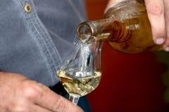Wine sampler Stock Image