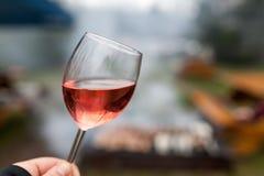 Wine sampler Stock Photography