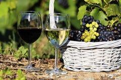 Wine spirit Stock Images