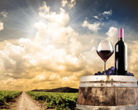 Wine still life against vineyard. Wine still life with cask and vineyard Royalty Free Stock Photo
