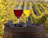 Wine still-life Stock Photo