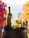 Wine still-life Royalty Free Stock Photography