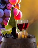 Wine still-life Stock Images