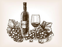 Wine Still Life Sketch Style Vector Illustration Stock Image