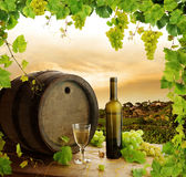 Wine still life and vineyard Royalty Free Stock Image
