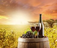 Wine. Still life on wooden keg with vineyard on background Stock Photos