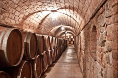 Wine storage Stock Images