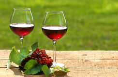 Wine on a summer day. Red wine on a summer day Royalty Free Stock Image