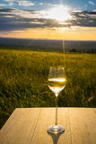 Wine in sunset Royalty Free Stock Photo