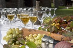 Wine on table with grape Royalty Free Stock Image