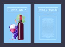 Wine Taste Whats About It Vector Illustration Stock Image