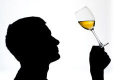Wine taster. A silhouette of a man testing wine Royalty Free Stock Photo