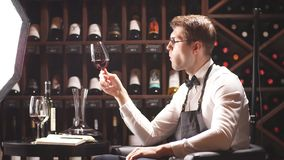 Wine taster writing in notepad information of wine origin and taste. Wine degustator man taking notes in winery with wine bottles stacked in rows on the shelves stock footage