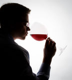 Wine tasting. Young expert sampling red wine royalty free stock photos
