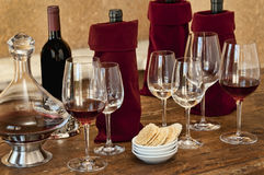 Wine tasting Royalty Free Stock Photo
