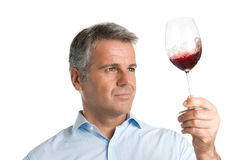 Wine tasting. Satisfied mature man looking at red glass of wine during a winetasting Stock Photos