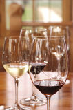 Wine tasting. Varieties of wine, red and white wine to be tasted Stock Photos