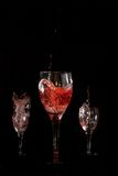 Wine tasting. Three different wines Royalty Free Stock Photo