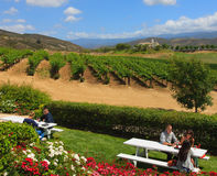 Free Wine Tasting, California Royalty Free Stock Photos - 25050788