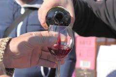 Wine tasting Stock Photography