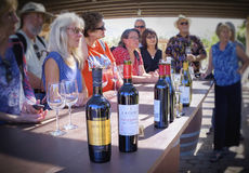 Wine Tasting, Guadalupe Valley, Mexico Royalty Free Stock Photos