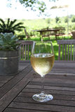 Wine tasting in Roberston, South Africa Royalty Free Stock Photography