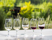 Wine tasting in South Africa. Wine tasting in Stellenbosch, South Africa. From the left: sauvignon blanc, chardonnay, blanc de noir, merlot, cabernet sauvignon royalty free stock image