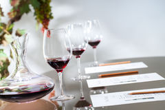 Wine tasting table set with decanter and glasses. Royalty Free Stock Images