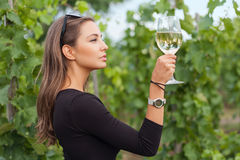 Wine tasting tourist woman. Royalty Free Stock Photography
