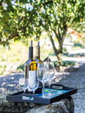 Wine tasting in Vale do Douro, Portugal Royalty Free Stock Photography