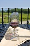 Wine Tasting in the Vineyard Royalty Free Stock Image