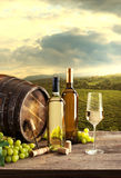 Wine tasting with vineyard background Royalty Free Stock Photo