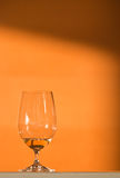 Wine tasting - white wine Royalty Free Stock Image
