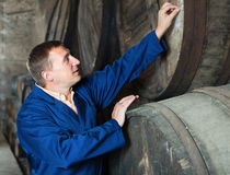 Wine technician expert working with wooden barrels Royalty Free Stock Image
