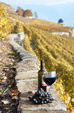 Wine in Lavaux region, Switzerland Stock Photo