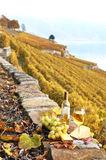 Wine in Lavaux region, Switzerland Royalty Free Stock Photo