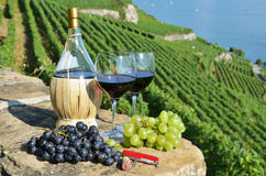 Wine in Lavaux region, Switzerland Stock Photo