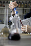 Wine testing lab Royalty Free Stock Image