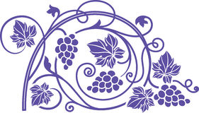 Wine theme design element with grape branches. Royalty Free Stock Photo