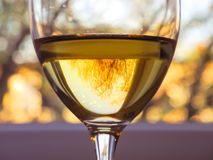 Wine theme Royalty Free Stock Image