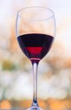 Wine theme Stock Images