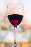 Wine theme Stock Images
