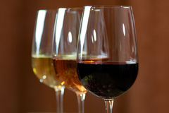 Wine. Three types of wine in the spotlight royalty free stock photography