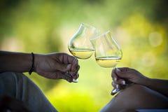 Wine toast stock image