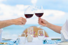 Wine toasting Royalty Free Stock Image