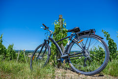 Wine Tourism-Bicycle in Bordeaux vineyards Royalty Free Stock Image