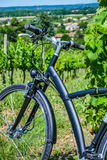 Wine Tourism-Bicycle in Bordeaux vineyards Royalty Free Stock Images