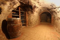 Wine tunnel Royalty Free Stock Photos
