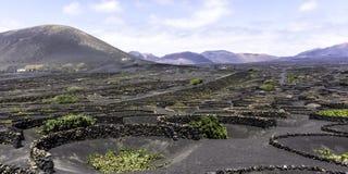 The Wine Valley of La Geria, Lanzarote, Canary Islands Stock Photography