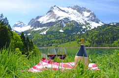 Wine and vegetables served at a picnic Stock Image